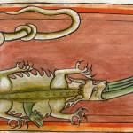 Людская суета вокруг крокодила