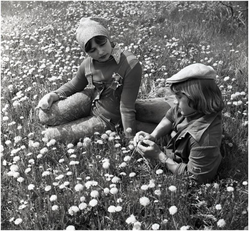 Пора цветения г Тольятти уч ПТУ -1_новый размер