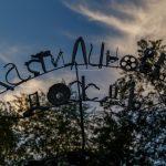 Фестиваль уличных искусств подарил горожанам другую реальность
