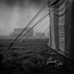 В Тольятти погибают от холода шестьдесят цирковых животных