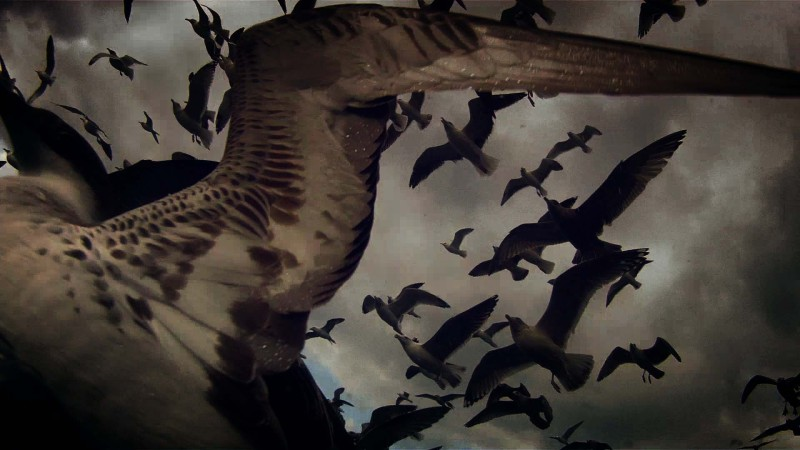 film-leviathan